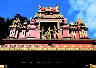 2018-Sri-Lanka-pics-400_0005_Layer 5